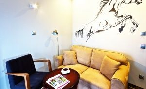 Hotel Nosselia***, 40 minut od Warszawy  Ośrodek szkoleniowo- wypoczynkowy / 1