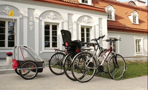 Pałac Pałac Domaniowski Resort & Conference / 8