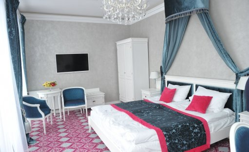 Pałac Pałac Domaniowski Resort & Conference / 19