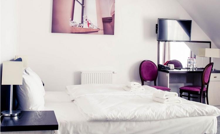 Hotel *** Pałac Krotoszyce *** / 17