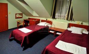 Hotel Złote Dęby Hotel *** / 1