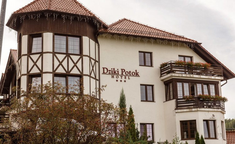 Hotel *** DZIKI POTOK Hotel *** Konferencje Grill & Prestige SPA / 12
