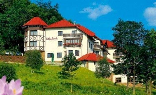 zdjęcie obiektu, Hotel DZIKI POTOK*** Prestige SPA, Karpacz