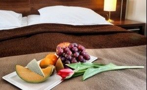 Hotel Austeria*** Conference & SPA Hotel *** / 0