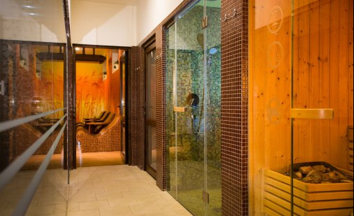 Hotel **** Hotel Ventus Natural & Medical Spa**** / 12