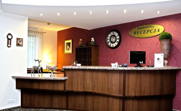 Hotel **** Hotel Amaryllis / 3
