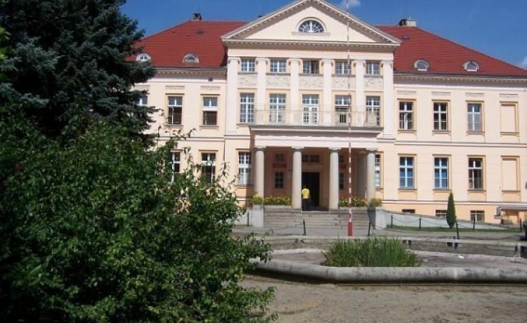 Pałac Górzno