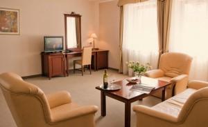 Hotel Dworek Skierniewice Hotel *** / 5