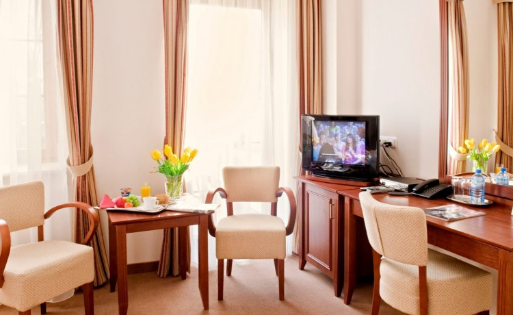 Hotel *** Hotel Dworek Skierniewice / 16