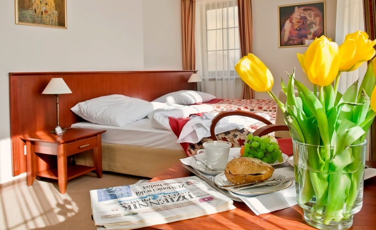 Hotel *** Hotel Dworek Skierniewice / 15