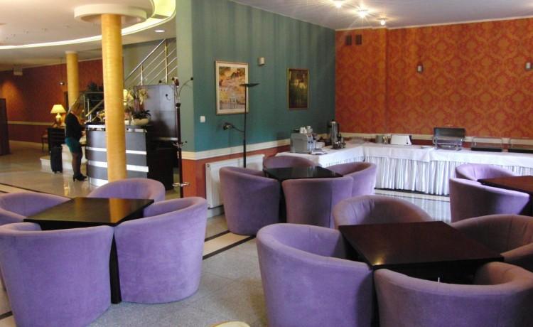 Hotel *** Hotel Dworek Skierniewice / 20