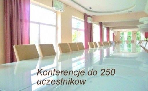 zdjęcie sali konferencyjnej, Pensjonat Orla Skała***, Szklarska Poręba