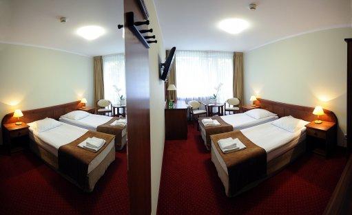 Hotel ** Hotel Zawisza / 9