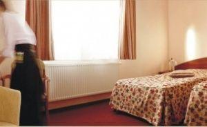 zdjęcie pokoju, Hotel Pod Wierzbą , Świdnica