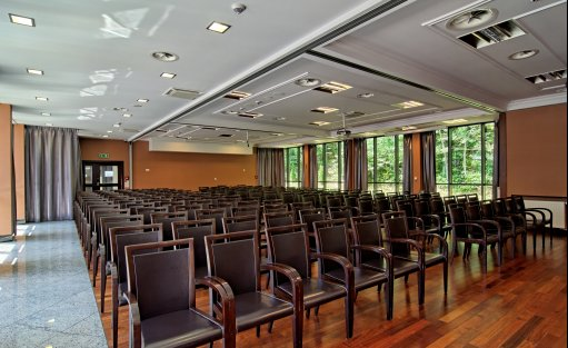 Hotel **** Hotel Czarny Potok Resort SPA & Conference / 22