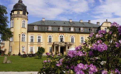 Pałac Pałac Żelazno / 0