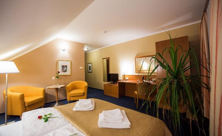 Hotel SPA Korona Park / 20