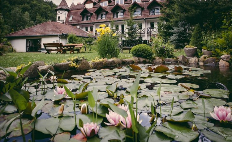 Hotel *** HOTEL LAS Piechowice *** / 10
