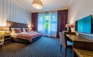 Hotel Dębowy Biowellness & SPA Pałace, dworki, zamki / 2