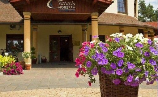 zdjęcie obiektu, Hotel Centuria Wellness & Spa, Ogrodzieniec