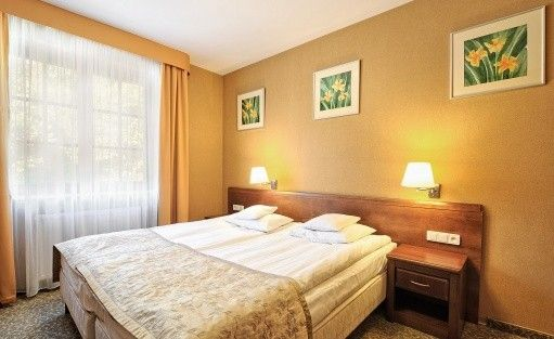 Hotel *** Hotel Centuria Wellness & Spa / 10