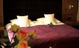 Hotel Niepołomice *** Hotel *** / 4