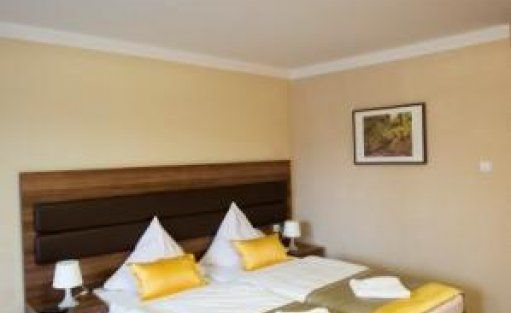 Hotel *** Hotel Beskidian*** / 10