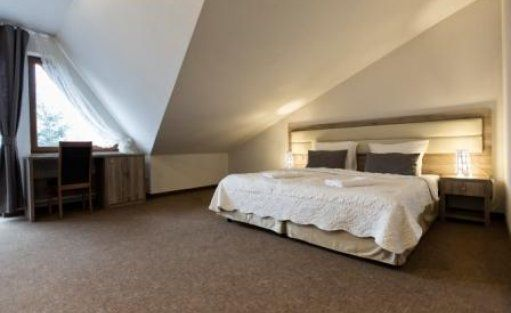 Hotel *** Hotel Beskidian*** / 8