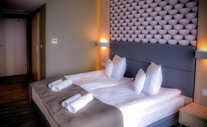 Hotel Astone Conference & SPA**** Hotel **** / 6