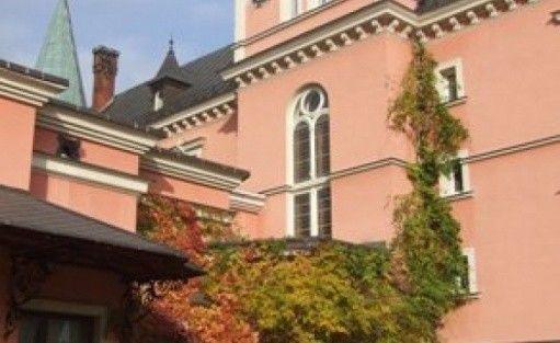 zdjęcie obiektu, Pałac Bielawa , Bielawa