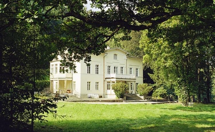Pałacyk Trzcińsko