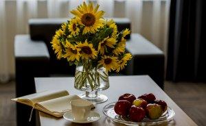 Hotel Meeting Hotel *** / 11