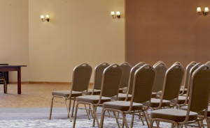 Sala Bankietowo-Konferencyjna Nowa Baśń Sala konferencyjna / 1