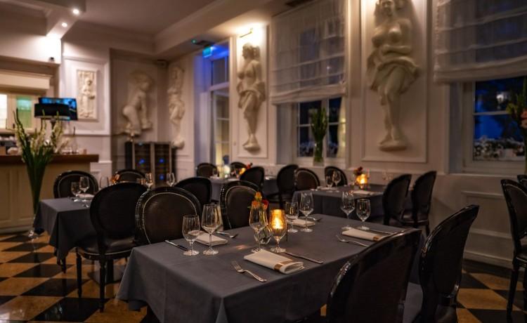 Hotel **** Hotel Pałac Alexandrinum / 15