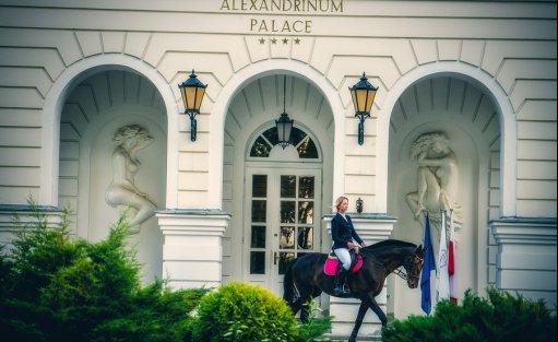 Hotel **** Hotel Pałac Alexandrinum / 8