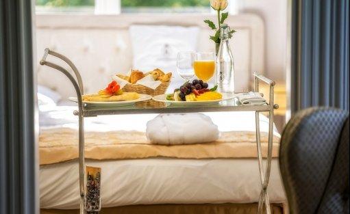Hotel **** Hotel Pałac Alexandrinum / 7