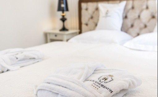 Hotel **** Hotel Pałac Alexandrinum / 17