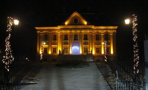 Pałac Pałac Borynia / 1