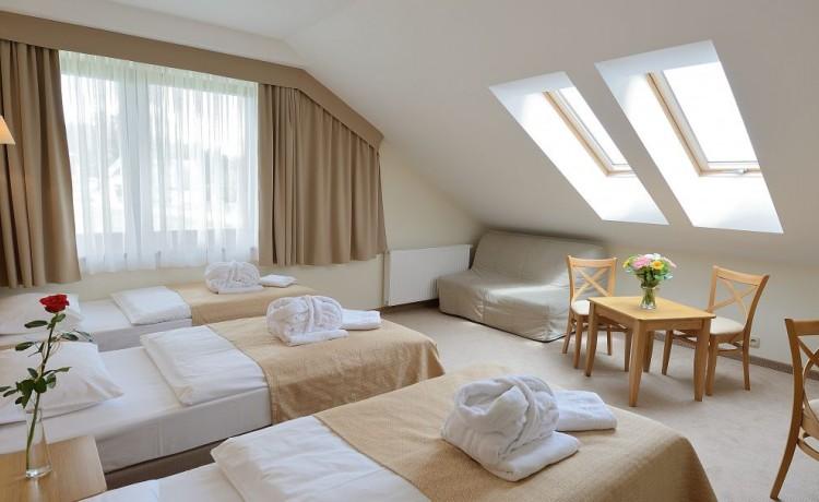 Hotel *** Hotel Alpejski w Polanicy-Zdroju / 14