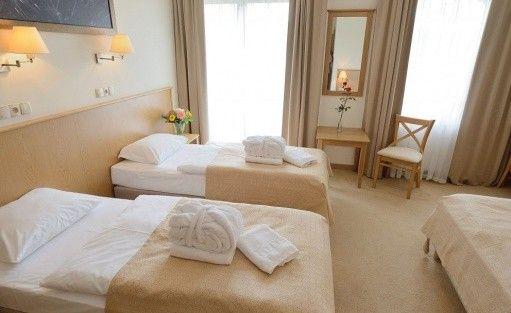 Hotel *** Hotel Alpejski w Polanicy-Zdroju / 12