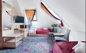 Hotel**** & SPA Czarny Groń  Hotel **** / 1