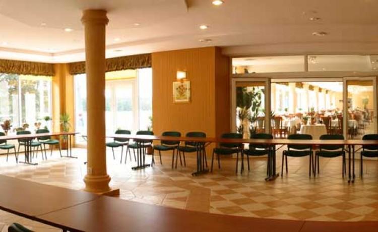 Hotel **** Hotel PIETRAK w Wągrowcu / 4