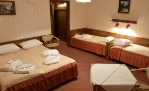 Hotel Sośnica Hotel *** / 1