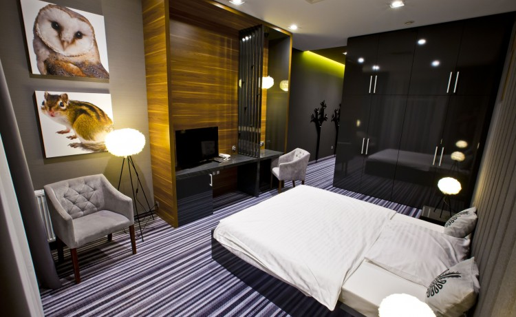 Hotel **** Hotel Bacówka Radawa & SPA**** / 9