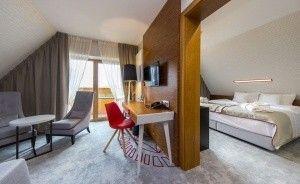 Hotel Kopieniec**** Fizjo-Med. & SPA Hotel **** / 1
