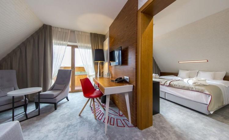Hotel **** Hotel Kopieniec**** Fizjo-Med. & SPA / 6