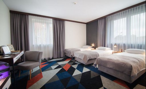 Hotel *** Hotel Vulcan / 8
