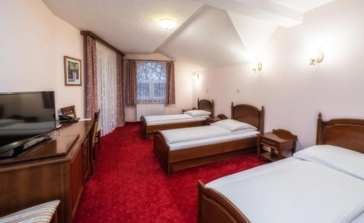Hotel *** Dworek Skawiński / 4