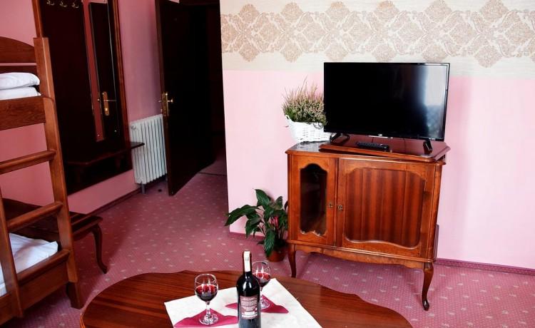 Hotel *** Hotel Polonia Toruń / 9