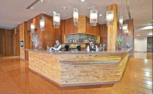 Hotel **** HOTEL PARTIZÁN**** Congress & Wellness resort - Slovakia / 15
